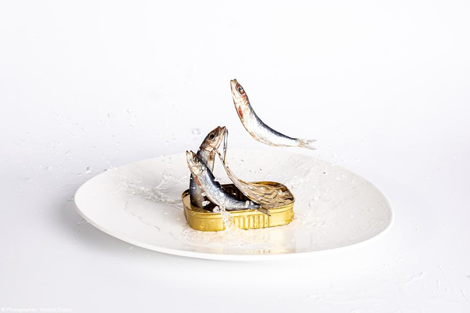 Food Photo competition: Sardines coming out of a can
