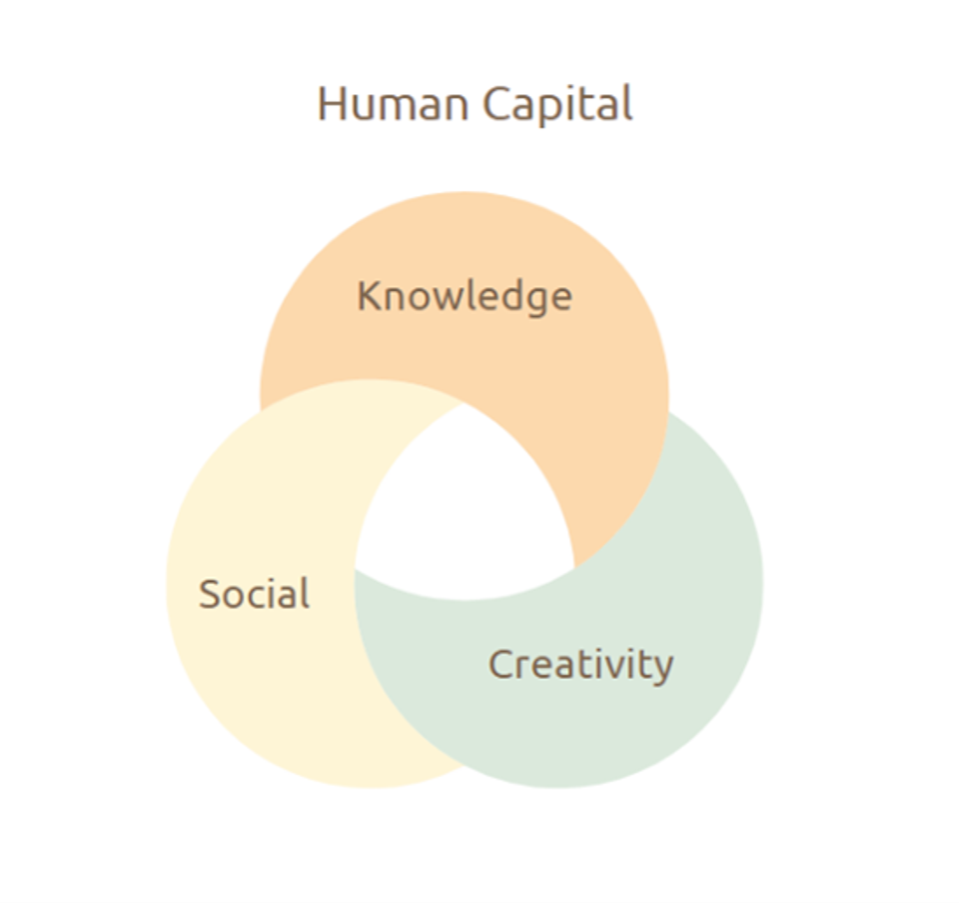 Human capital: knowledge Social creativity