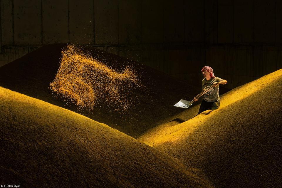 A man shoveling wheat in Turkey.