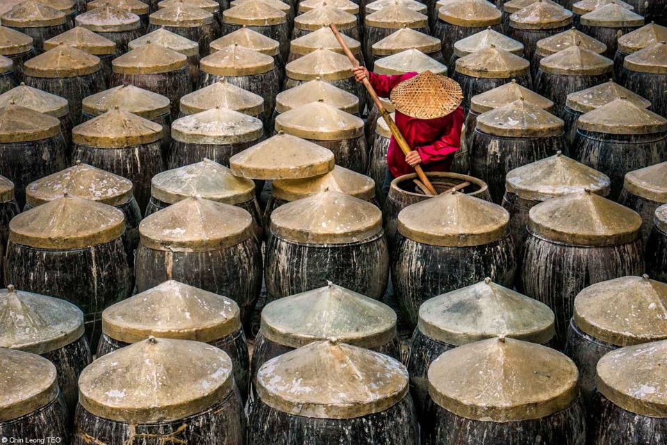 A worker in China fermenting fish sauce in clay urns.