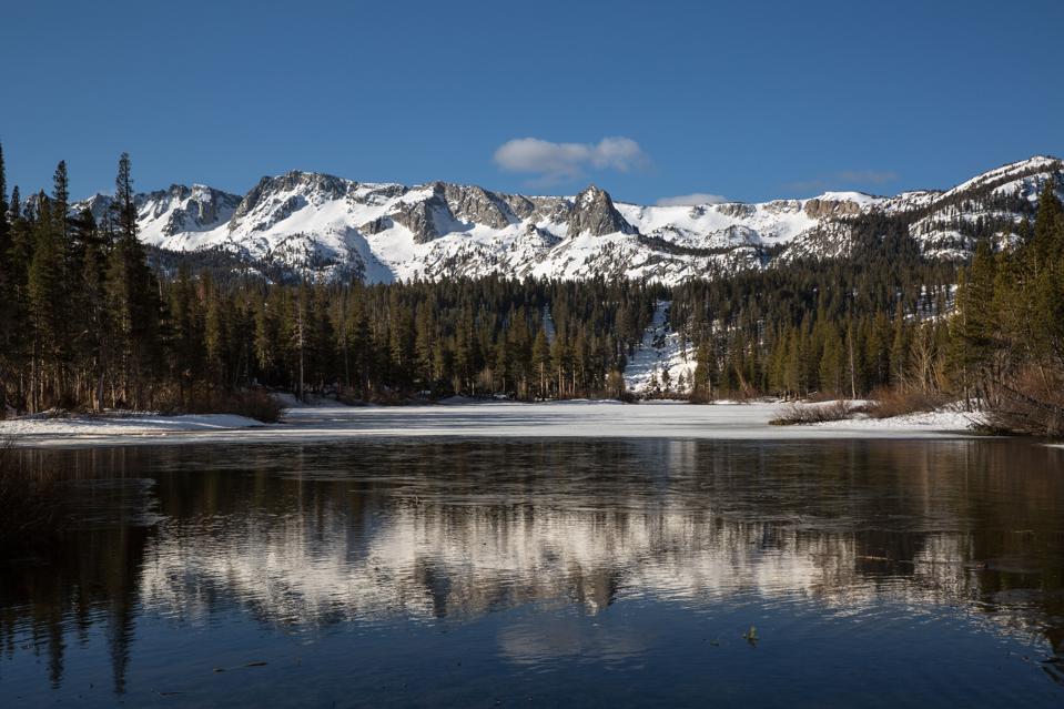 Spring Arrives Early in the Sierra Nevada