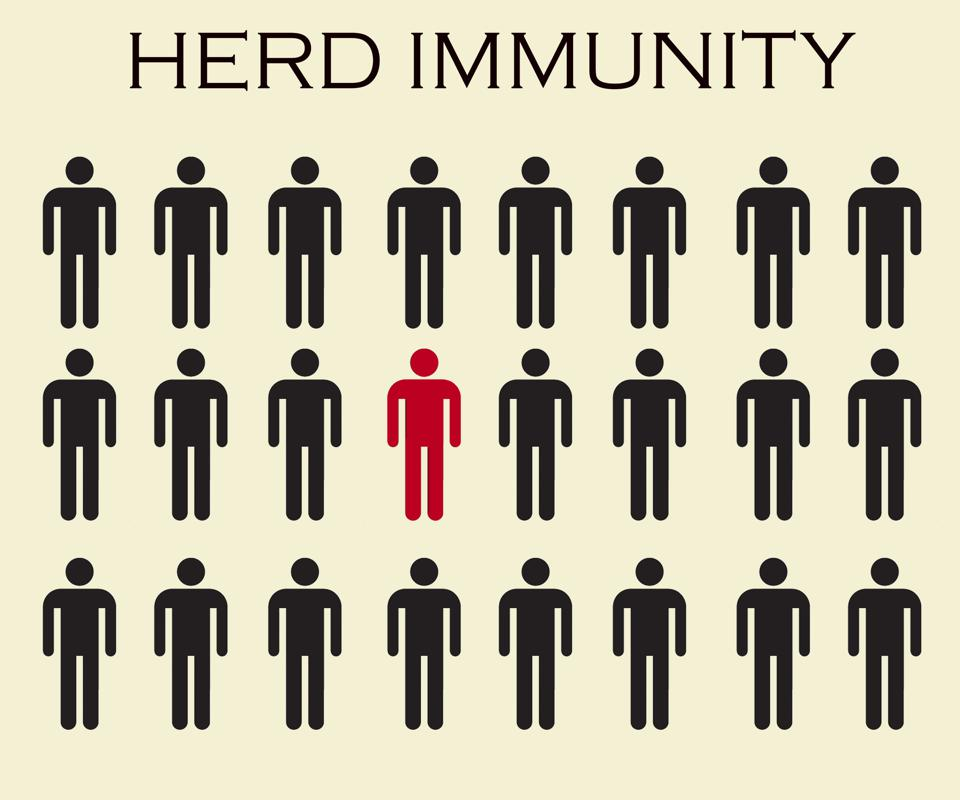 Group of people with Herd immunity. Concept of herd immunity. Virus spread. Immunized population with one infected people. Virus spreading in society