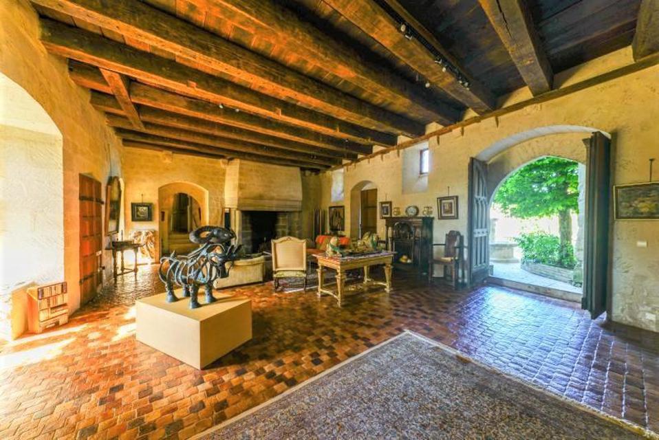 Chat Palace médiéval dans le salon Périguis, Tordogne, France