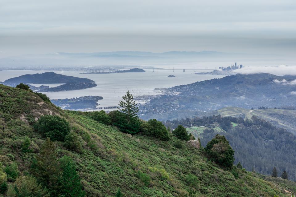 Three Days Of Wellness: San Francisco