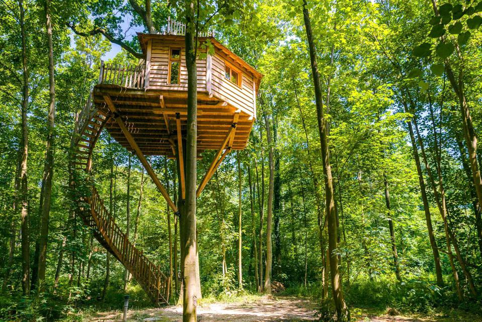 A long spiral staircase leads up to a wooden tree house in a forest in France