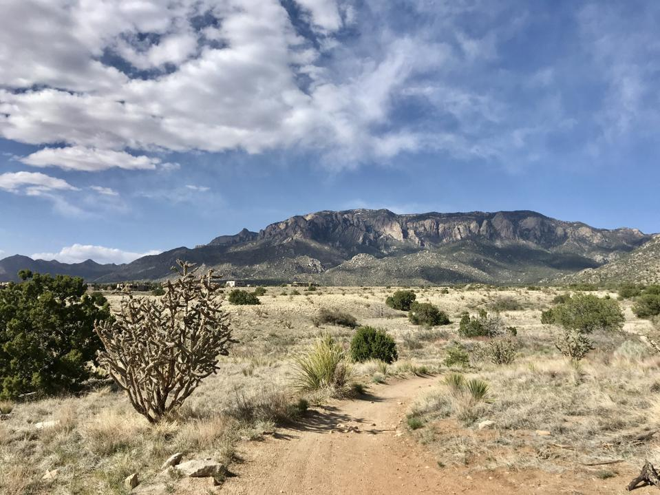Sandia Peak rises in the distance on a hiking trail in the foothills of Albuquerque.