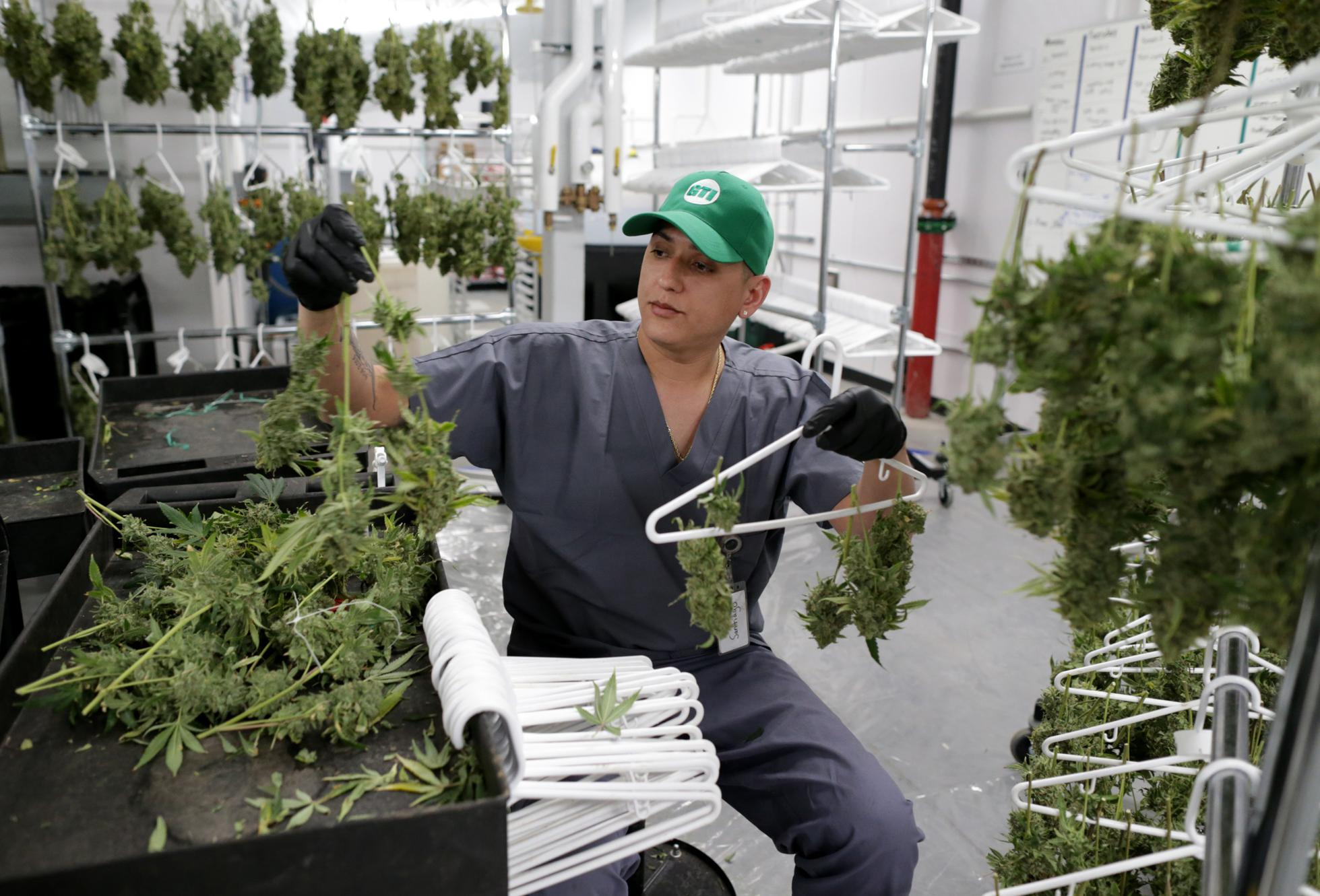 Old Mills Get A New Lease From Cannabis