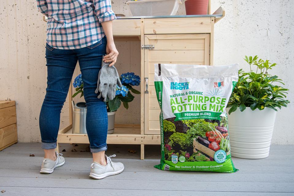 soil, gardening, peat-free soil