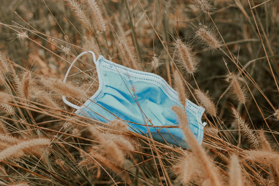 Close-Up Of Discarded Surgical Mask Among The Dry Grass