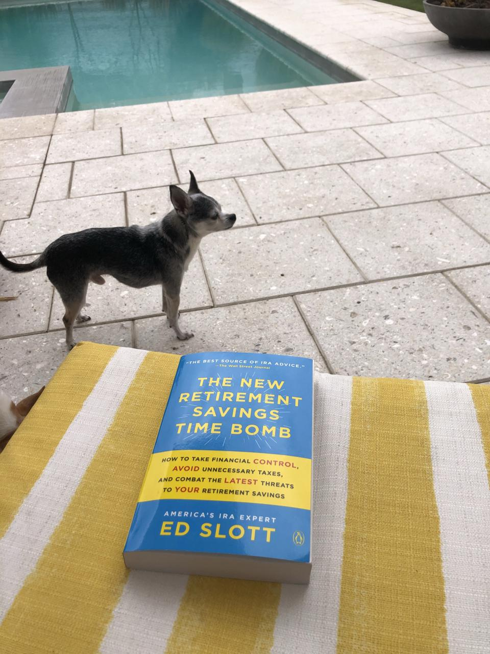 Chihuahua by pool and the book The New Retirement savings Time Bomb
