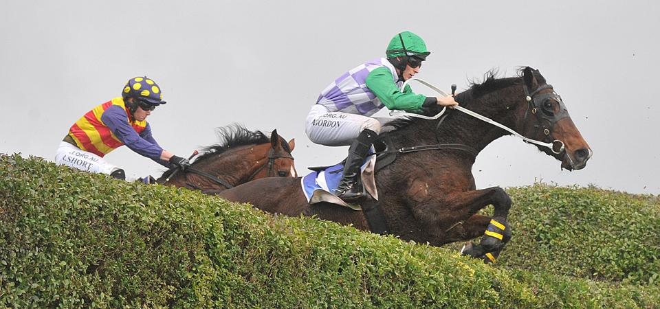 P.Pullen & Co Bonney Energy Two Rivers Steeplechase