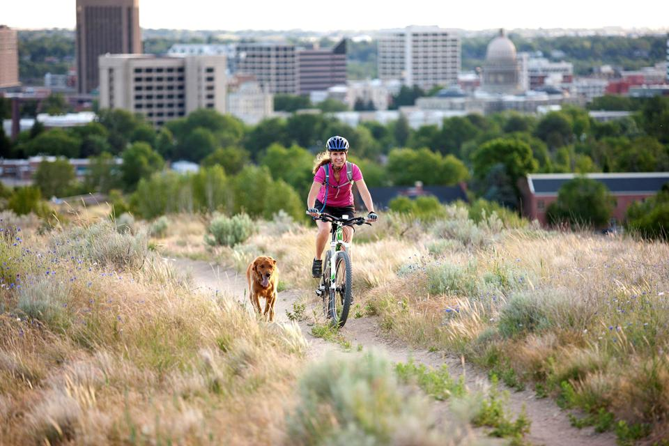 Mountainbiking in Boise with a dog