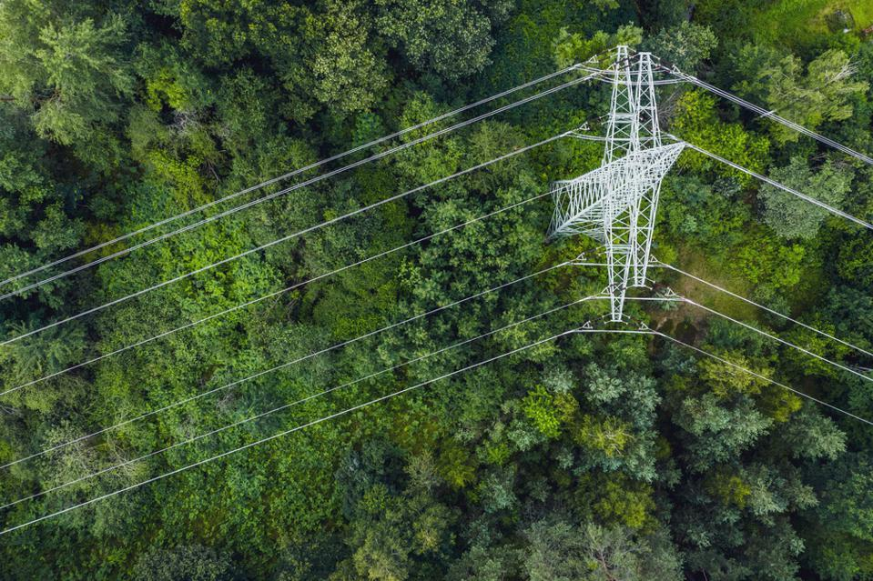 Aerial view of power lines leading through forest.