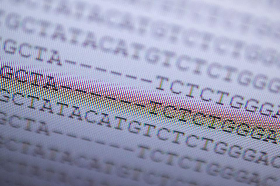 A sequenced genetic analysis of the UK variant of the novel coronavirus.