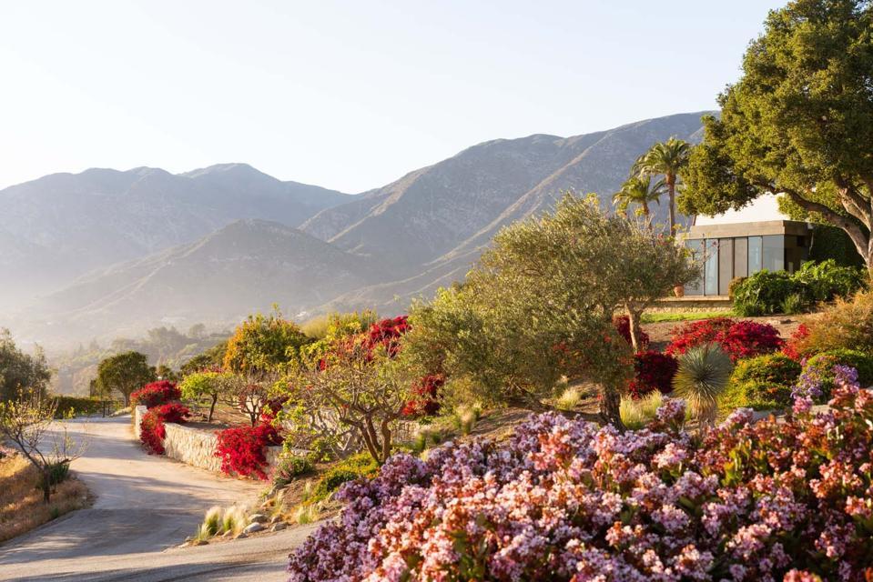 front drive to hilltop haven at 560 Toro Canyon Park Road Carpinteria, CA