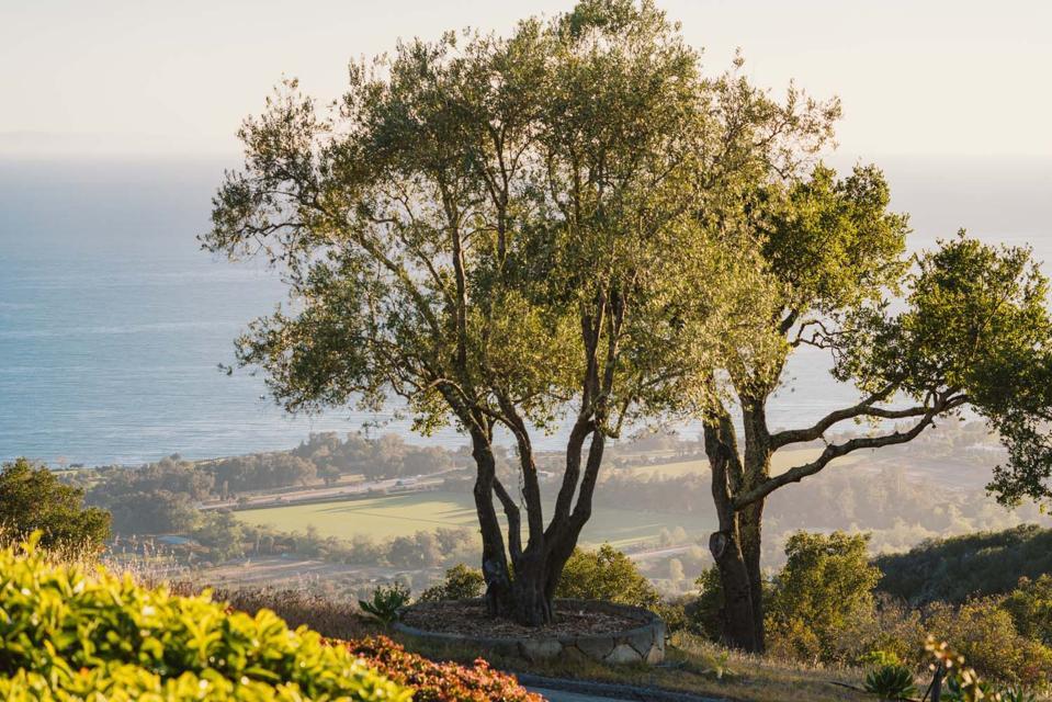 view of polo fields in santa barbara from 560 Toro Canyon Park Road Carpinteria, CA