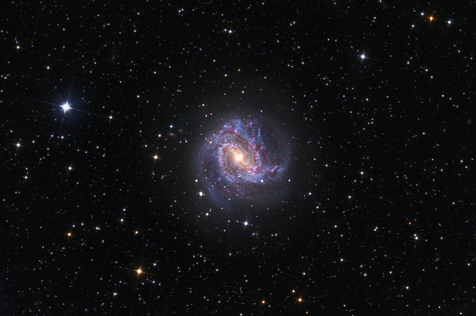 The Southern Pinwheel Galaxy, M83, shares many features with our own galaxy.