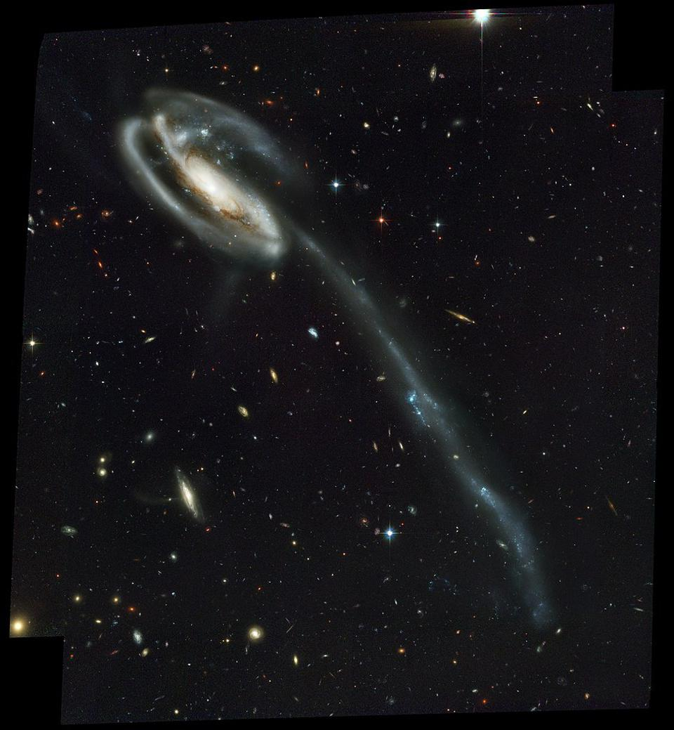 The Tadpole Galaxy, shown here, has an enormous tail to it: evidence of tidal interactions