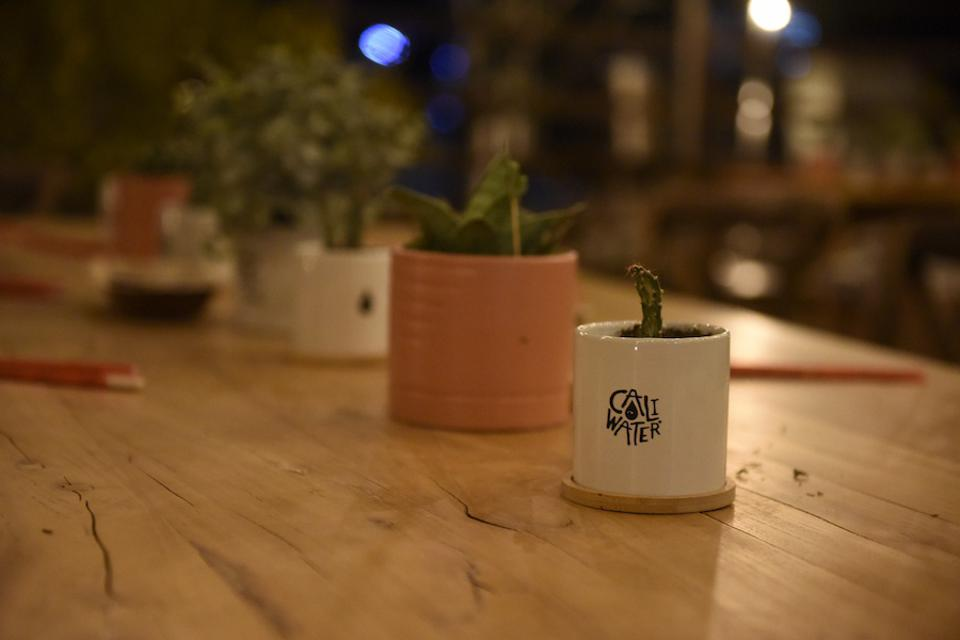 Plants and planters on a wood table