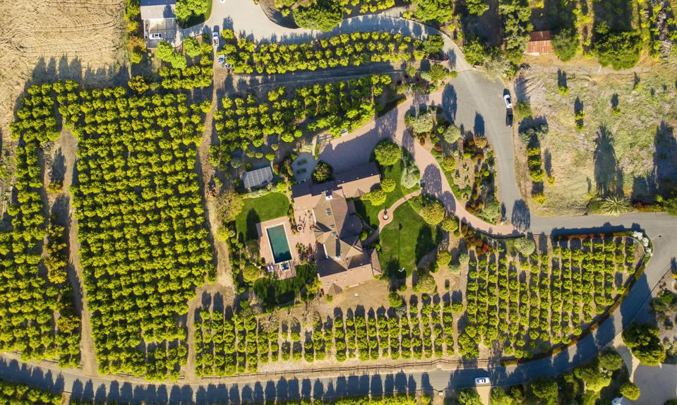 5 Acre Orchard Estate 1130 Via Del Rey Santa Barbara, CA, USA
