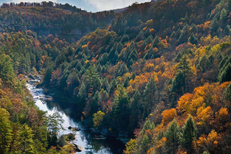 Obed Wild and Scenic River