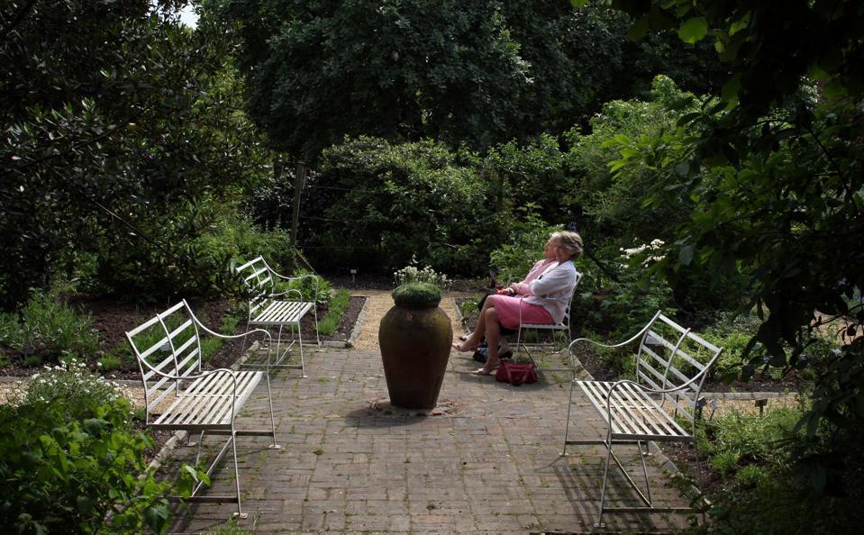 Chelsea Physic Garden Anniversary