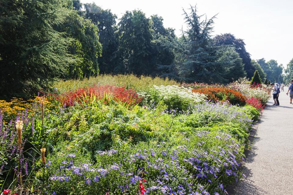 England, London, Richmond, Kew Gardens, The Large Flower Display Walk