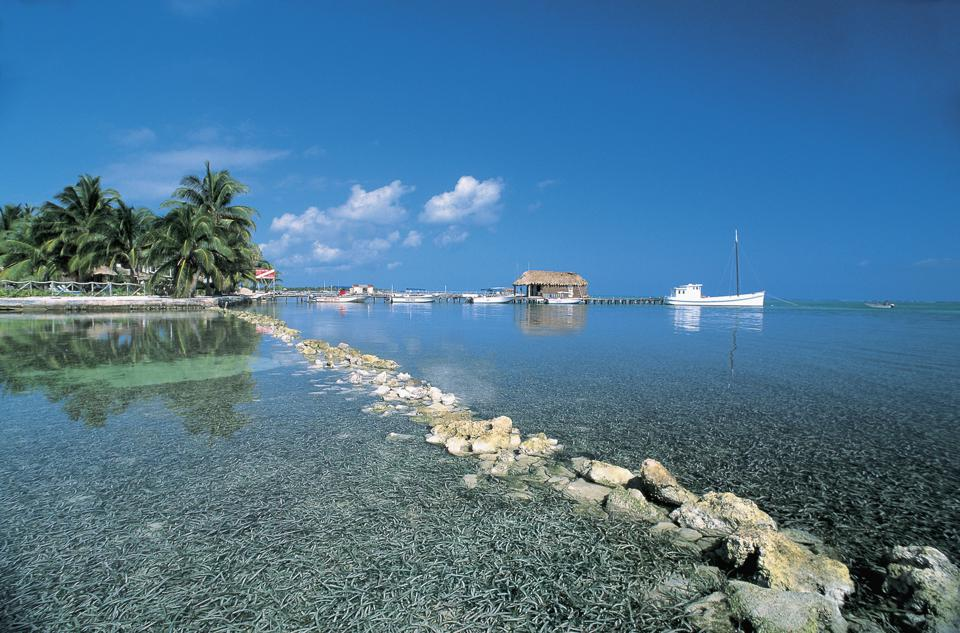 Boats in the sea, San Pedro, Ambergris Caye, Belize