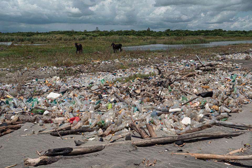 Plastic debris on El Quetzalito Beach, Guatemala