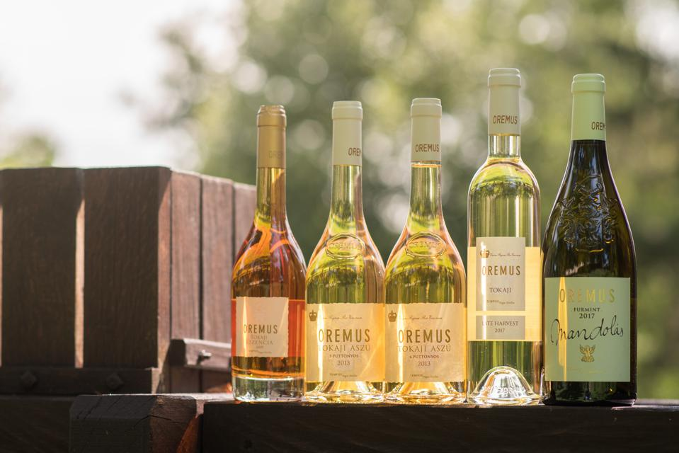 The Lineup of Vega Sicilia's Oremus Wines from Tokaj, Hungary