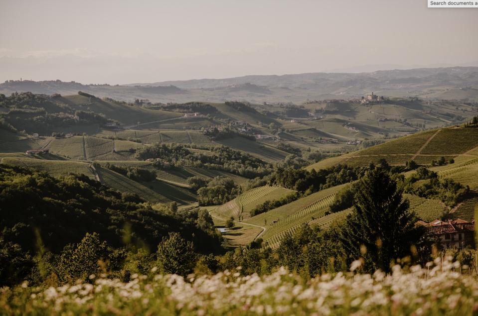 The Piedmont hills surrounding Casa di Langa.