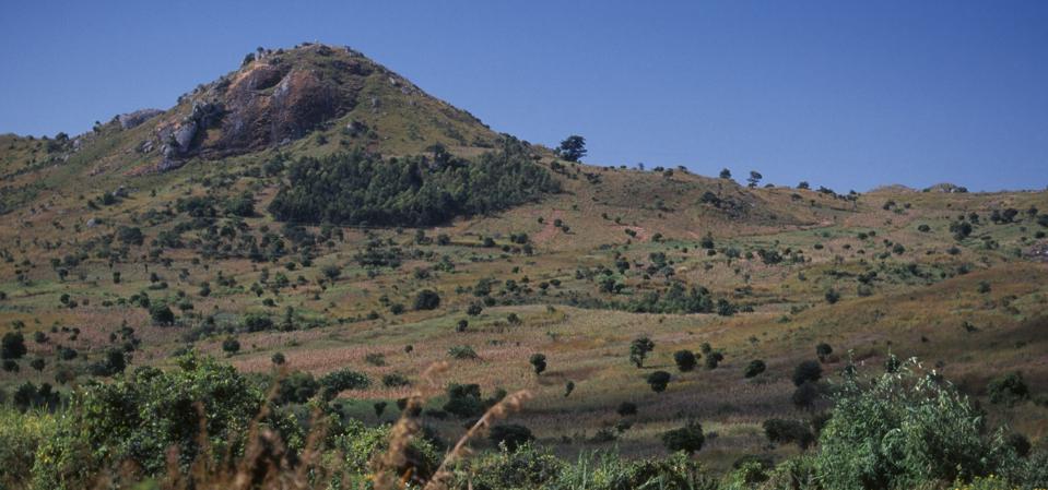 MALAWI Blantyre-Lilongw. Area of deforestation on the Mozambique border.
