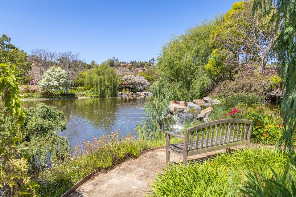gardens and walking paths of the villa nafissa estate rancho santa fe