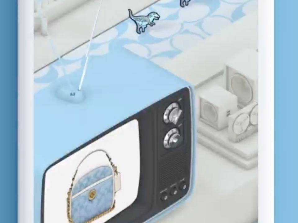 virtual world of the coach
