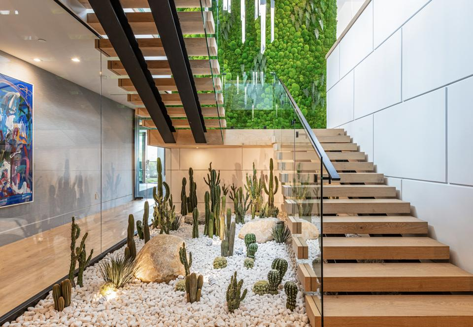There is an indoor living wall and a cactus garden.