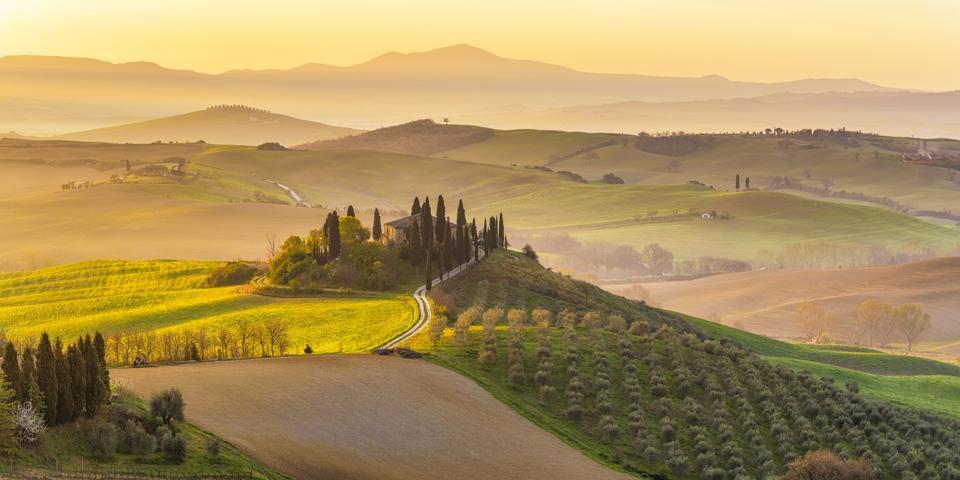 L'Italia, Toscana, San Quirico d'Orsia, Podore Belvedere, montagne verdi, giardini di ulivi e piccoli vigneti sotto il sole del mattino