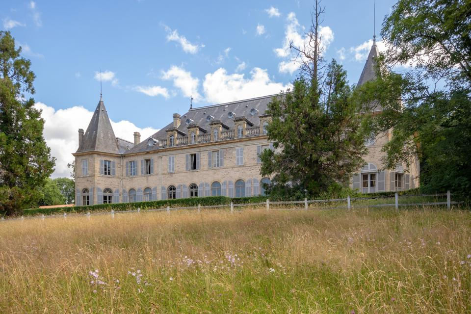 Nestled in a green setting, the chateau is for sale with about 50 hectares