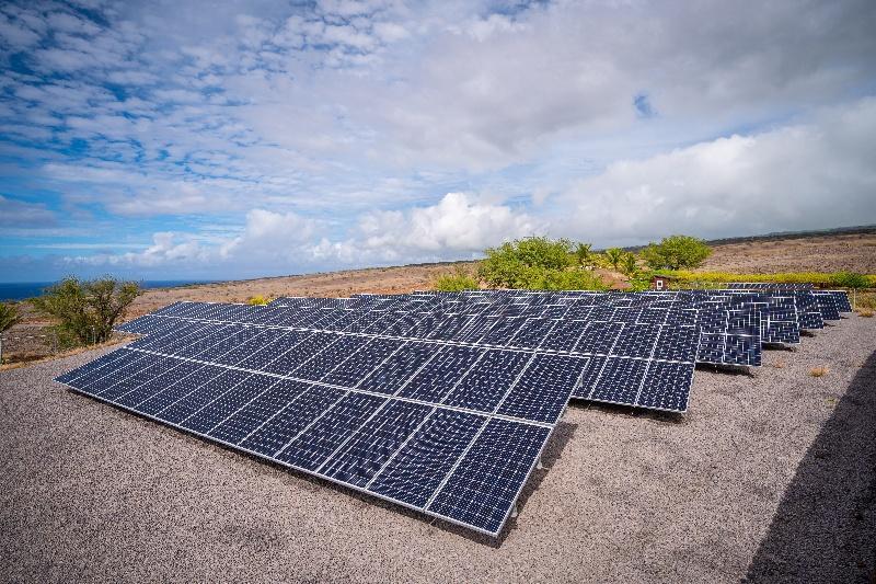 Solar panels at Terraformation's Pacific Flight site in Hawai'i.