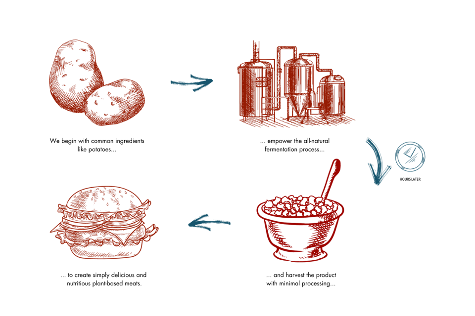 Turning microflora into plant-based meat starts with fermentation tanks and plenty of potatoes.