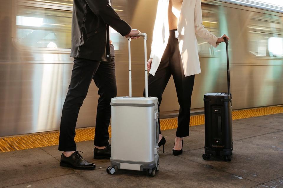 vegan suitcase