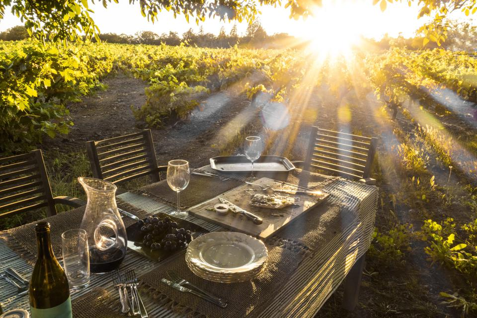 A table in the middle of a vineyard in Sonoma, California.