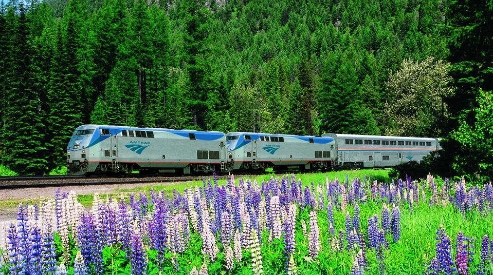 An Amtrak train travels near purple wildflower meadows in the Pacific Northwest.