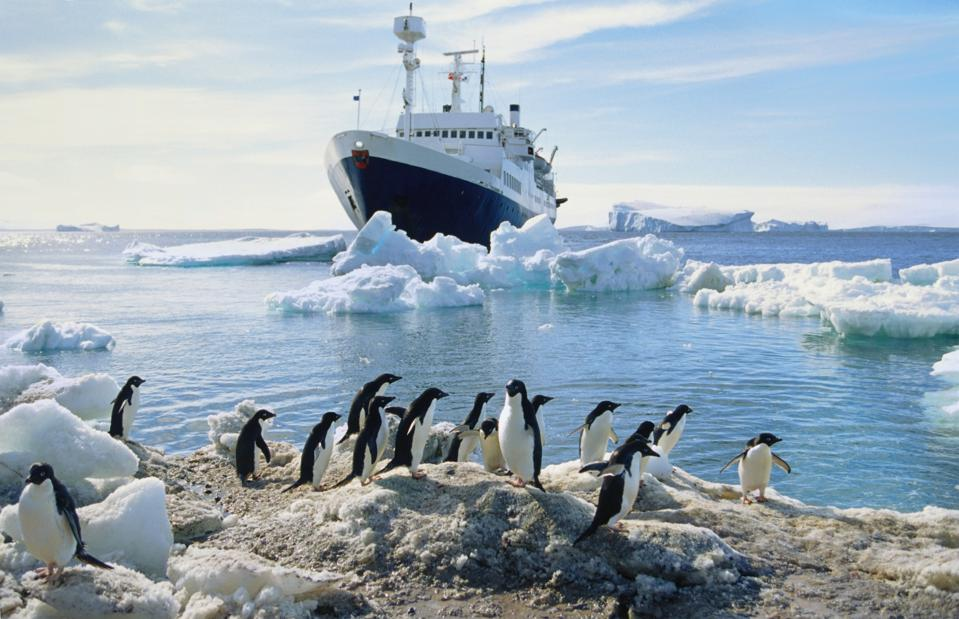 Group of penguins on the beach, boat and icebergs in the background