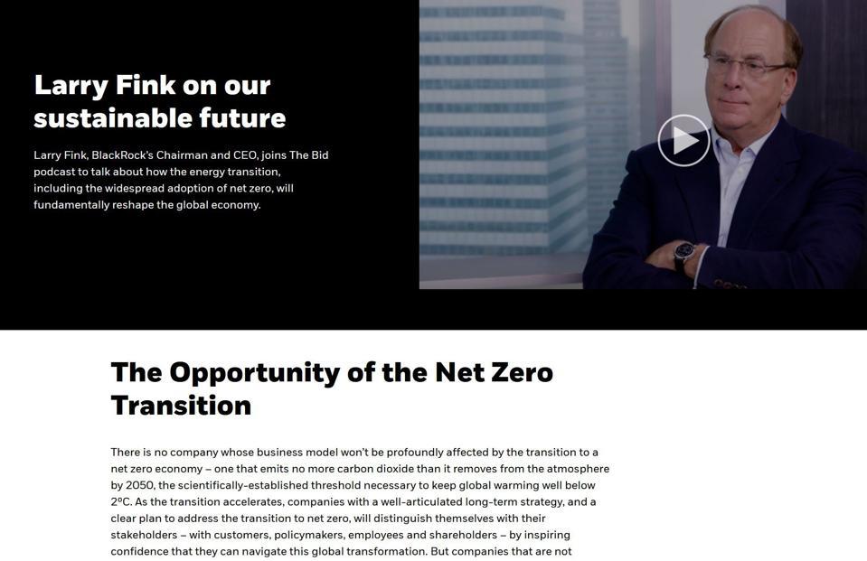 Screen shot of BlackRock CEO Larry Fink 2021 letter to shareholders on blackrock.com