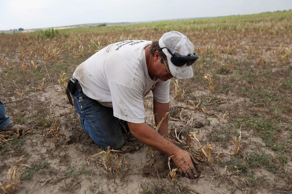 Historic Drought Cripples Farms And Ranches In American West
