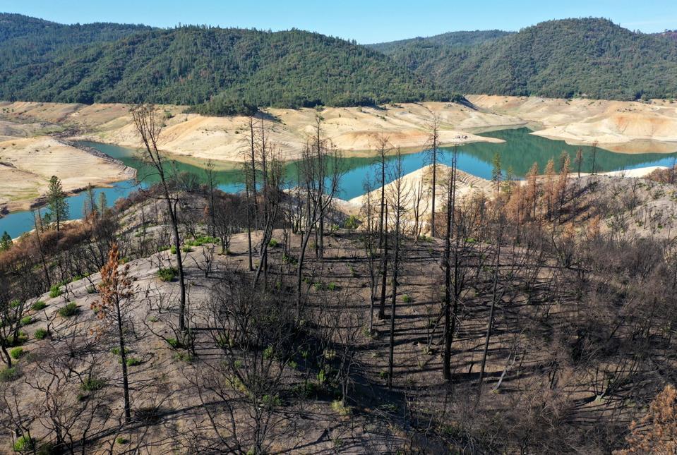 Recent advancements in predictive technologies can help public and private institutions prepare, prevent, and mitigate wildfire risk