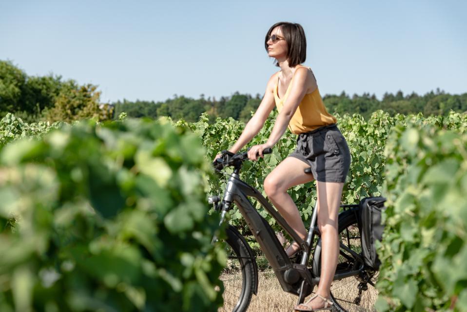 A woman riding a bike through a vineyard.