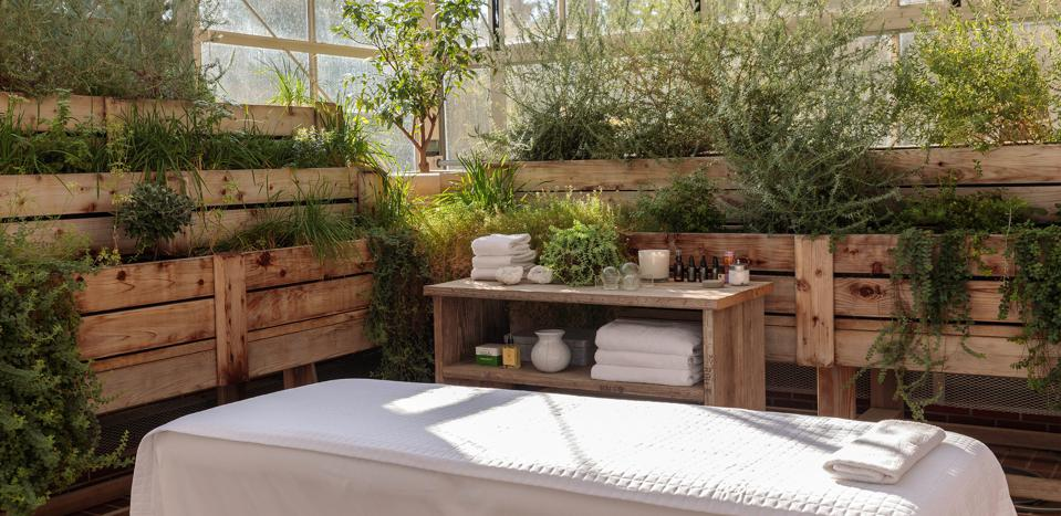 A massage table sits inside of a verdant greenhouse, with essential oils and towels nearby