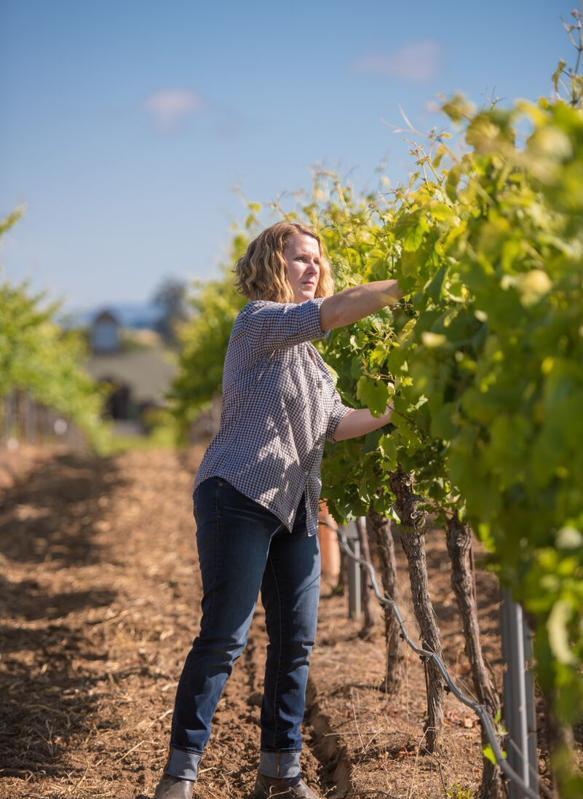 Chris Kajani in the Bouchaine vineyards in Carneros, Napa Valley, California