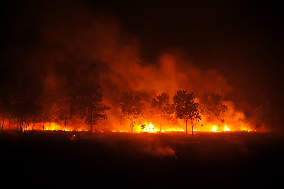 Fire Engulfs Riau Forest In Indonesia